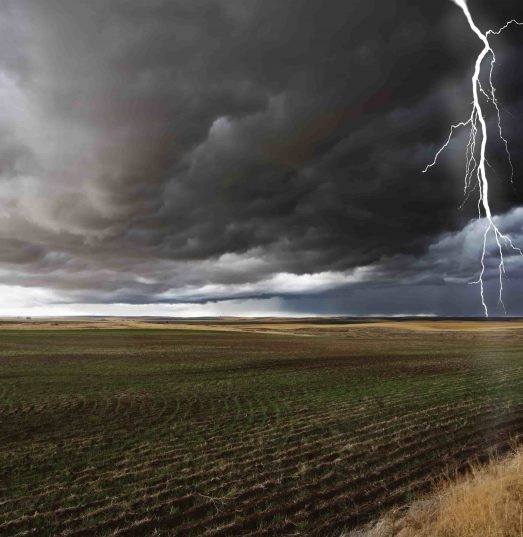 Does farm insurance cover damage to crops in a storm?