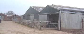 Rebuilding costs for a Modern Loose Cattle shed